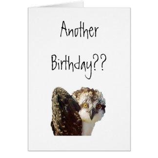 Osprey Birthday Stationery Note Card