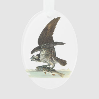 Osprey by Audubon Ornament