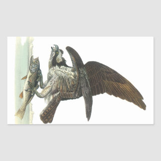 Osprey by Audubon Rectangular Sticker