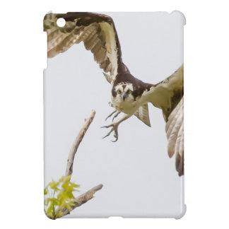 Osprey Coming At You iPad Mini Cover