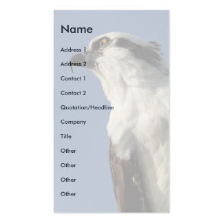 osprey Double-Sided standard business cards (Pack of 100)