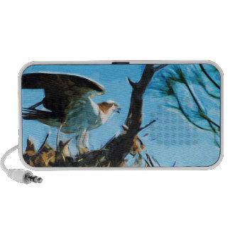 Osprey en el impresionismo del extracto de la jera laptop altavoz