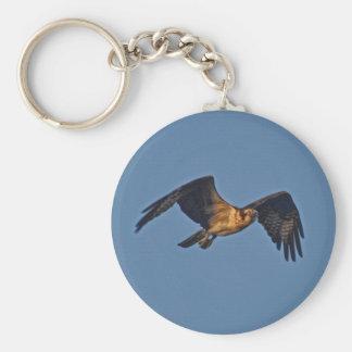 Osprey Fish Eagle Flying at Sunset Basic Round Button Keychain