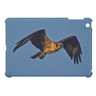 Osprey Fish Eagle Flying at Sunset iPad Mini Cases