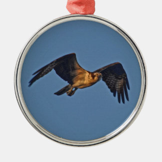 Osprey Fish Eagle Flying at Sunset Round Metal Christmas Ornament