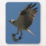 Osprey/Fish Mousepad