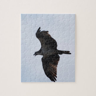 Osprey Flight Puzzle