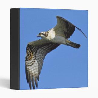 Osprey Flying Binder