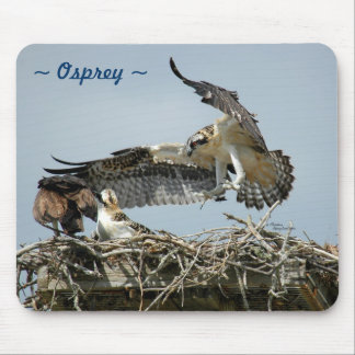 Osprey flying nest Mousepad