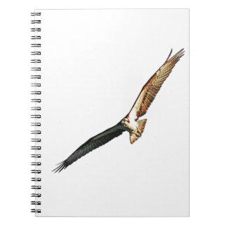 Osprey Flying Notebook