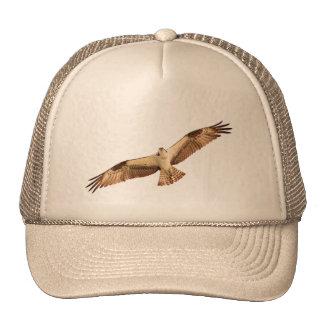 Osprey Hawk Hat