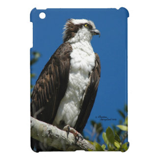 Osprey hawk iPad Mini Case