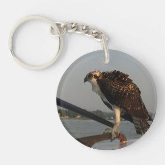 Osprey Hawk Keychain