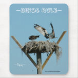 Osprey hawk nest Mousepad
