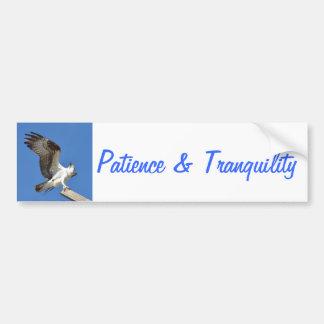 Osprey Hawk patience tranquility Bumper Sticker