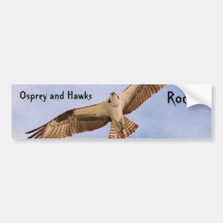 Osprey Hawks Rock Bumper Sticker