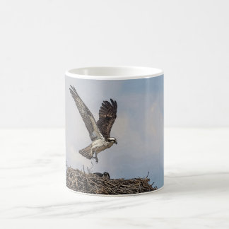 Osprey in a nest coffee mug