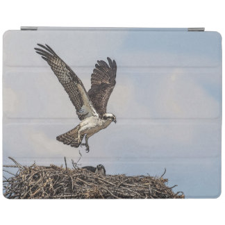 Osprey in a nest iPad smart cover