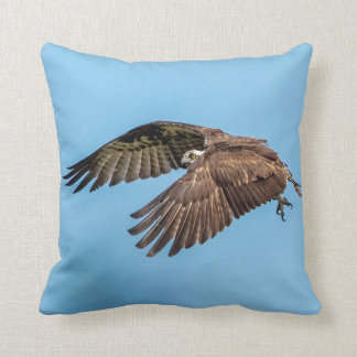 Osprey in flight at Honeymoon Island State Park Throw Pillow