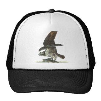 Osprey, John Audubon Mesh Hats