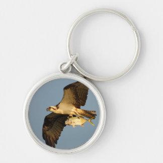 osprey keychain