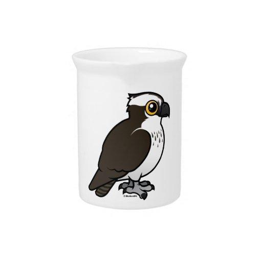 Osprey lindo jarron