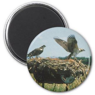 Osprey Nest 2 Inch Round Magnet