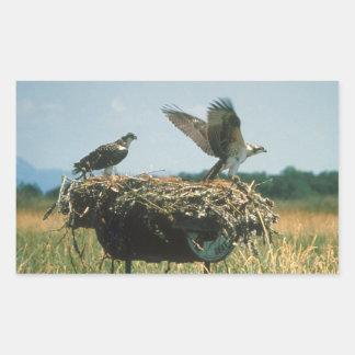 Osprey Nest Rectangular Sticker