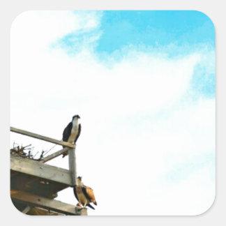 Osprey Nest Square Sticker