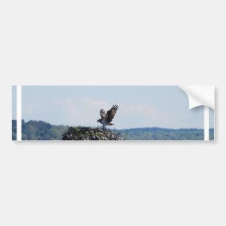 Osprey on Nest Bumper Sticker