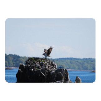 Osprey on Nest Card