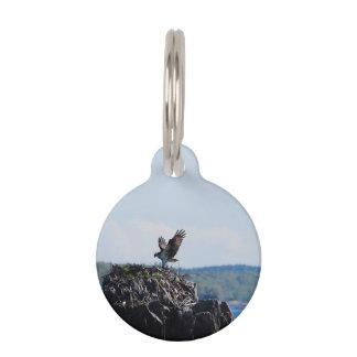 Osprey on Nest Pet Tag