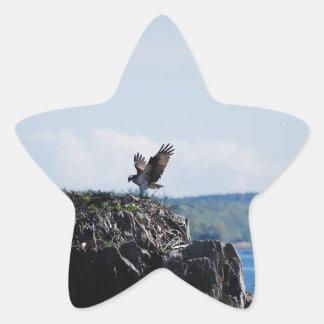 Osprey on Nest Star Sticker