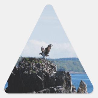 Osprey on Nest Triangle Sticker