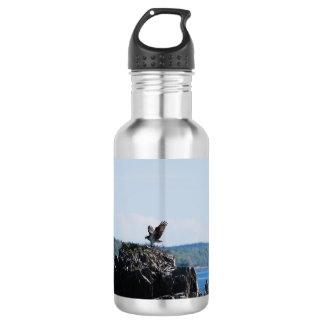 Osprey on Nest Water Bottle
