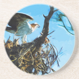 Osprey on the Nest Abstract Impressionism Drink Coaster