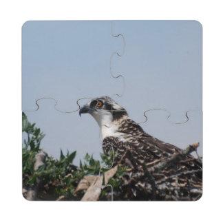 Osprey Posavasos De Puzzle