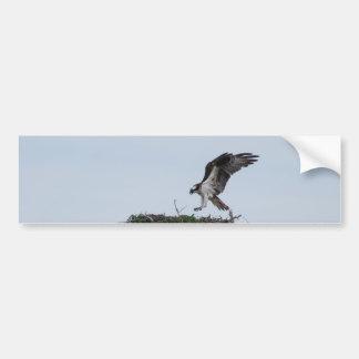 Osprey que aterriza a pegatinas para el parachoque pegatina para auto