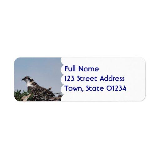Osprey que se sienta en etiquetas de correo de la etiqueta de remite