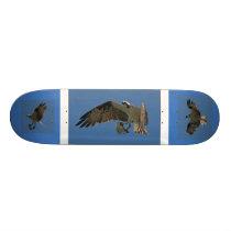 Osprey Raptor Bird Wildlife Animals Wetlands Skateboard Deck