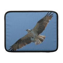 Osprey Raptor Bird Wildlife Animals Wetlands Sleeve For MacBook Air
