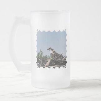 Osprey Sitting on Nest Frosted Beer Mug