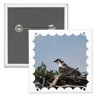 Osprey Sitting on Nest Pin