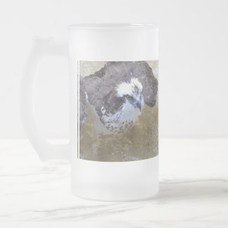 Osprey Splish Splash Frosted Beer Mugs