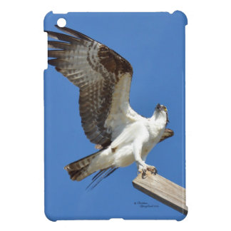 Osprey stretching wings iPad Case