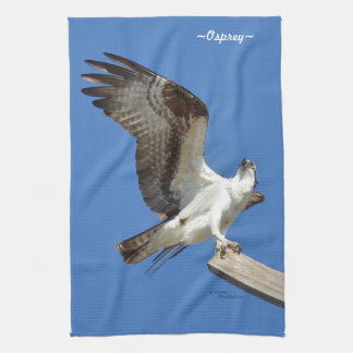 Osprey stretching wings Kitchen Towel