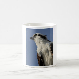 Osprey Taza De Café