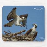 Osprey & their nest Mousepad
