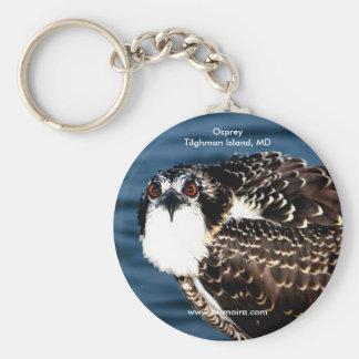 Osprey, Tilghman Island, Dogwood Harbor, Maryland Keychain