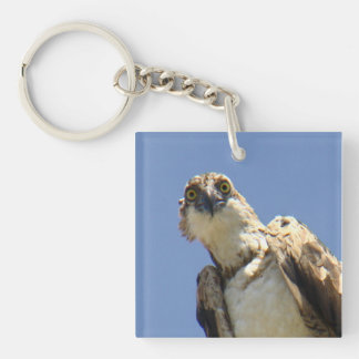 Osprey Watching Keychain